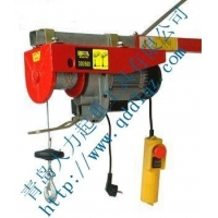 微型电动葫芦-电动葫芦-青岛大力专业销售