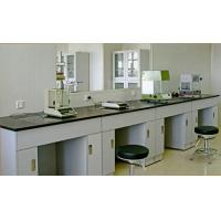 实验室边台、中央台、药品柜、样品柜、器皿柜、通风柜