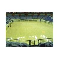 体育地板专用漆