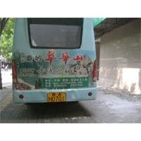 西安·秦岭·翠华山旅游区