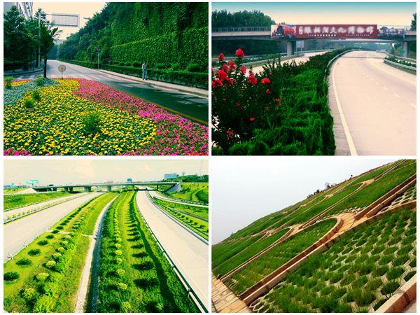 高速公路园林绿化