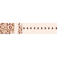 达芬奇密码系列之生活解码釉面砖