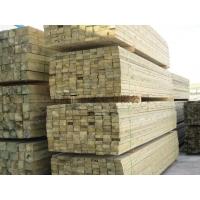 滿洲里樟子松防腐木批發