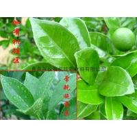 农用有机硅农药助剂