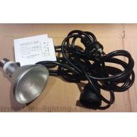 金卤灯用70W高品质电子镇流器配三线插头电源线