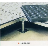 泰安防静电地板|滨州防静电地板|济宁防静电地板|龙宇防静电地