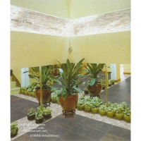 南京瓷砖-世域装饰建材-金丝玉玛抛晶砖43
