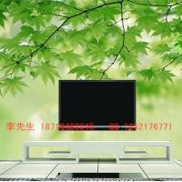 瓷砖电视背景墙喷墨机