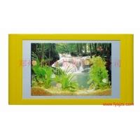 供应浮阳水族画 壁挂水族画 壁画式鱼缸 热带鱼壁挂水族馆 壁