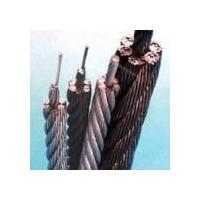 304不銹鋼絲繩,保定316鍍鋅鋼絲繩,包膠不銹鋼絲繩