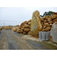 景观石园林奇石天然石头