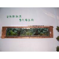 自然的原木式水族箱
