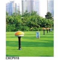CXCP015草坪灯 草坪灯型号 草坪灯厂家