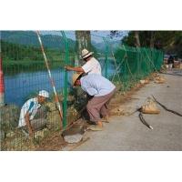 水渠隔离护栏网 河道隔离护栏网  池塘隔离围栏网