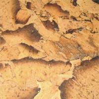 耐适佳—软木墙板系列—水墨蝶