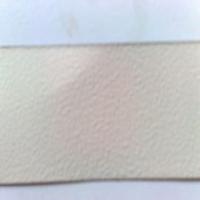 海捷-丙烯酸橘型漆