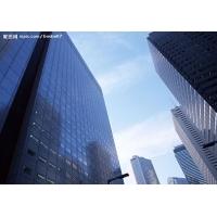 上海时丹利名牌镀膜玻璃幕墙