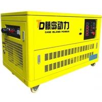 燃气发电机,20KW静音汽油发电机组