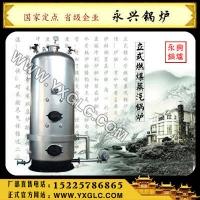 燃煤锅炉蒸汽锅炉