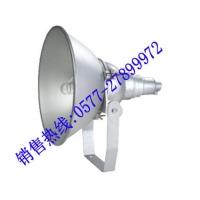 NTC9200防震型投光灯NTC9200 CNT9150A