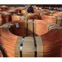 C5120磷铜盘线,硬态C5101磷铜圆线,磷铜弹簧线