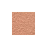 7205(73mm*73mm铁红色通体砖)