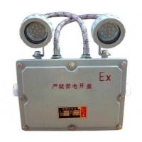 BAJ52防爆双头应急灯,双头应急灯,防爆应急灯价格