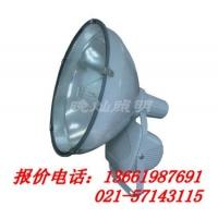 CNT9150,防水防尘防震投光灯