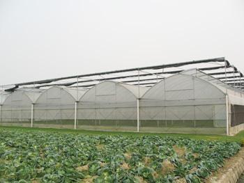 上海 北京 江西/智能阳光大棚是由阳光板为覆盖材料建设的温室。...