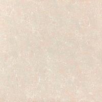 成都佳飞金富力陶瓷金贝石系列-CG98A12