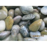 供应鹅卵石-五彩鹅卵石-天然鹅卵石-纯色鹅卵石-鹅卵石厂家批