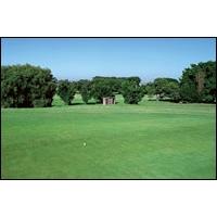 麗裝地坪-人造草皮地坪