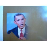 深圳塑钢扣板UV平板产品彩印机