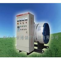 滨州WDZ0.6-85/60电热水洗浴锅炉