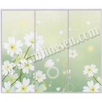 移门-南京移门-南京尖森艺术玻璃-27