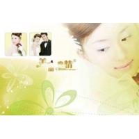 南京绿美居无缝壁画-个性定制-婚纱摄影