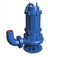 甘肃兰州污水泵
