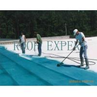 混凝土屋面防水涂料认准瑞芙特,世博品质,10年质保